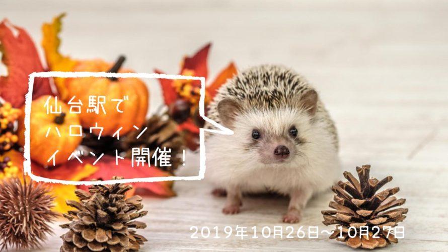 仙台駅★10/26〜10/27。2019年ハロウィンイベント開催!