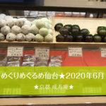 めぐりめぐるめ仙台店★2020年6月前半。「京都 成寿庵」