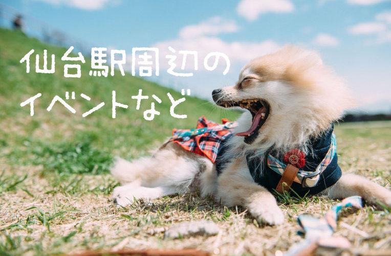 エスパル仙台★エキチカキッチンリニューアルのお知らせ+めぐりめぐるめ等