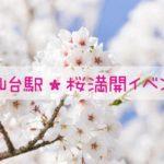 仙台駅構内★「春の杜 桜舞う」 イベント開催中